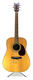 Jack Johnson Signed Cort Earth Pack NS Natural Acoustic Guitar